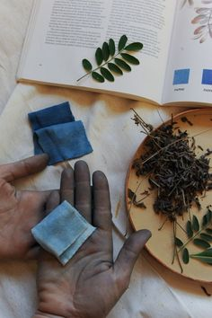 Alabama Chanin Natural Dyes  Photographer: Gina Binkley