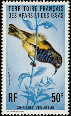 Variable Sunbird stamps - mainly images - gallery format