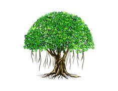 Banyan Tree Bonsai, Tree Sketches, Name Wallpaper, Palm Plant, Tree Logos, Tree Illustration, Painting Lessons, Tree Art, Cat Art