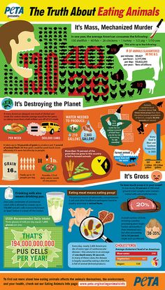 The truth about eating animals: it's mass, mechanized murder. It's destroying the planet. Brought to you by peta.org.
