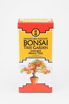 Miniature Indoor Bonsai Tree for decoration