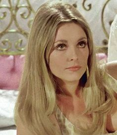 Sharon Tate / 'Jennifer North' 'Valley fo the Dolls' Classic Actresses, Female Actresses, Actors & Actresses, Hollywood Actresses, Sharon Tate, Roman Polanski, Valley Of The Dolls, Digital Art Girl, Timeless Beauty