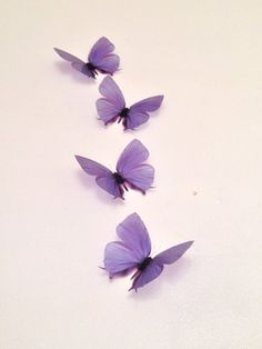 butterfly aesthetic 4 Lilac Lavender in Flight Butterflies Wall Mounted Art Butterfly Accessories Butterfly Wall Art, Butterfly Wallpaper, Purple Wallpaper, Purple Butterfly, Lavender Aesthetic, Purple Aesthetic, Aesthetic Vintage, Lilac Walls, Lovely Creatures