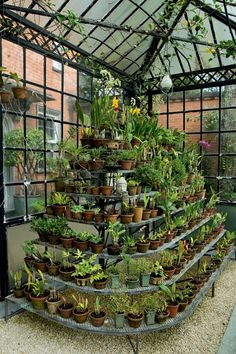 20 trendy home garden greenhouse Small Greenhouse, Greenhouse Gardening, Herb Garden Design, Diy Garden Decor, Garden Shop, Home And Garden, Garden Center Displays, Orchid House, Pergola