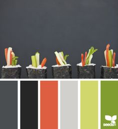Exciting & high-contrast palette for a high Accuracy value. Also great for Innovation. #VoiceValues | sushi hues via Design-Seeds | commentary via The Voice Bureau at AbbyKerr.com