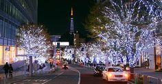Christmas Illuminations Tokyo
