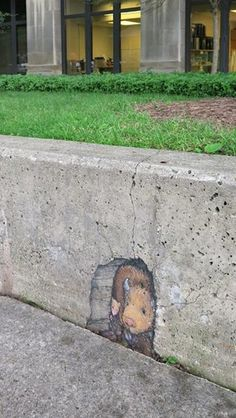 """David Zinn: """"Caution is held in high regard by mice and teacup buffalo."""" - close up"""