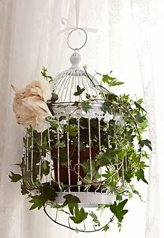 Love the idea of peppering a home with greenery filled vintage birdcages like this.