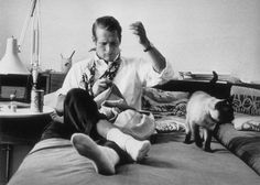 - paul newman - sewing pants. What modern day star would do this? Love him AND he's a cat man. WIN-WIN
