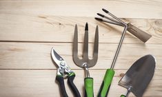 Why are tools the best kind of content for driving your website's growth?