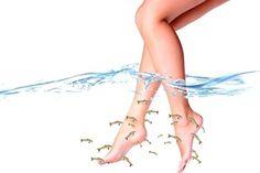 Χαλάρωση & Απολέπιση με Fish Spa, μόνο με €5!  Βυθίστε χέρια και πόδια μέσα στο νερό με μικρά ψαράκια Garra rufa, που θα αναλάβουν να απομακρύνουν από το δέρμα σας τα νεκρά κύτταρα και να σας προσφέρουν μοναδική ευεξία και χαλάρωση.  Αφεθείτε στη μαγευτική εμπειρία του Fish Spa, που τώρα σας προσφέρεται στην εκπλητική τιμή των €5! Health And Wellness, Spa, Ballet Skirt, Beauty, Fashion, Moda, Tutu, Health Fitness, Fashion Styles