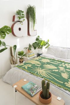 There is a misconception about plants in bedrooms. It is healthy to have some there? Do they take away all the oxygen and suffocate you? We're sharing our answers and best plants for your bedroom. Indoor Plants Clean Air, Indoor Plant Wall, Small Indoor Plants, Cool Plants, Best Plants For Bedroom, Bedroom Plants, Small Room Bedroom, Plant Rooms, Bedroom Ideas