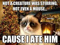 *  I ate him...