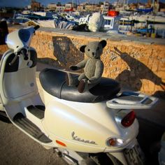 Off for a spin! #tweedyted thinks the #Vespa is the only way to cruise the coast #doyouvespa #Aegina
