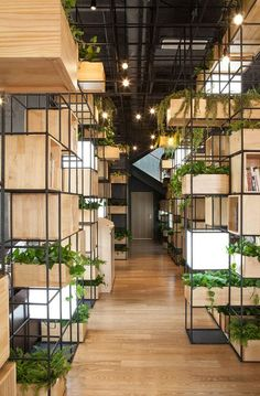 Wooden box shelves and planters populate the gridded metal framework installed around the perimeter of this cafe in Beijing by design collective Penda (+ slideshow).  Penda – who recently spoke to Dez