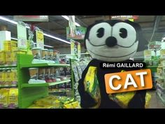 CAT (REMI GAILLARD) - YouTube