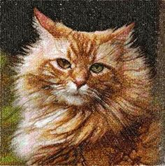Advanced Embroidery Designs - Red Cat