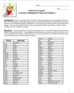 Biology Prefixes And Suffixes Worksheet Worksheets For School ...