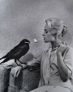 "Tippi Hedren having her cigarette lit by a crow on the set of ""The Birds"", 1963. pic.twitter.com/TGbqKFM6dP"
