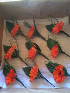 Buttonholes - orange Gerberas