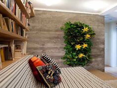 Indoor Living Wall Planter living wall planters outdoor design ~ http://lovelybuilding
