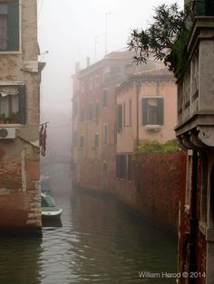 William Herod. Venezia Italy