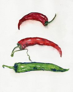Chillies, original watercolor painting, still life painting, watercolours paintings art