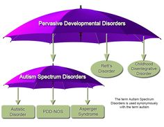 the clinical description of the pervasive developmentspectrum disorder or autism In the annotated bibliography of assessments the clinical description of the pervasive developmentspectrum disorder or autism a.
