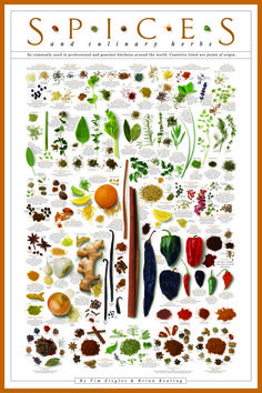 A beautifully informative print that identifies and describes herbs and spices so you can kick your food up a notch when it comes to flavor. | 27 Products For People Who Love To Eat, But Suck At Cooking
