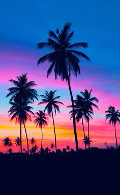 Image via We Heart It https://weheartit.com/entry/175329621/via/32779000 #background #blue #cute #neon #pink #sky #tree #tropical #tumblr #wallpaper #wallpapers