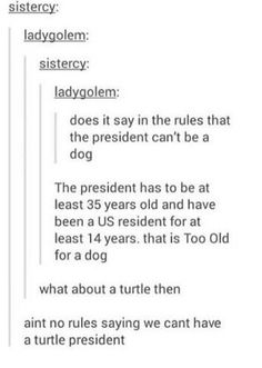 Well a turtle president would still be better than trump. At least we wing have The Great Wall of America Stupid Funny, The Funny, Hilarious, Funny Tumblr Posts, My Tumblr, Funny Quotes, Funny Memes, Jokes, Funny Pins