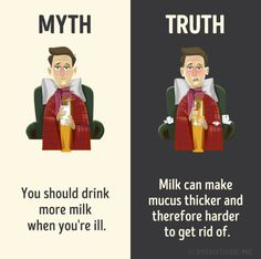 My life is a lie! I thought a lot of these myths were true until I saw these myth vs reality memes. Wierd Facts, Wow Facts, Intresting Facts, Real Facts, Wtf Fun Facts, True Facts, The More You Know, Did You Know, Film Anime