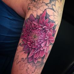 One of many flowers in this half sleeve. Today we did the ever so fun #chrysanthemum  #colortattoo #floraltattoo #allthepinks @fusion_ink @jessiehynes