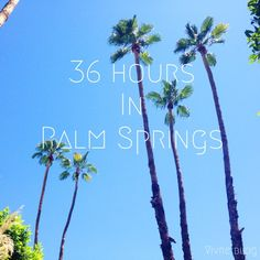 city guide: 36 hours in palm springs (things to do, eat & see in palm springs)