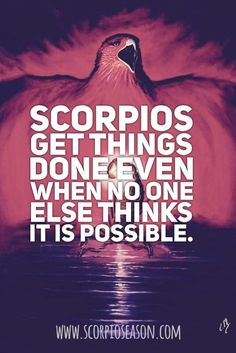 Basic information about the zodiac sign Scorpio. Scorpio Sun Sign, Astrology Scorpio, Scorpio Zodiac Facts, Scorpio Love, Scorpio Girl, Scorpio Quotes, Scorpio Female, Zodiac Quotes, Scorpio Characteristics