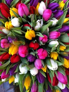 Bouquet of spring flowers - Tulpen Arrangements Ikebana, Floral Arrangements, Flower Arrangement, My Flower, Pretty Flowers, Colorful Flowers, Fast Flowers, Flower Bomb, Spring Flowers