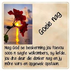 Evening Greetings, Goeie Nag, Afrikaans Quotes, Good Night Quotes, Prayer Board, Special Quotes, Sleep Tight, Day Wishes, God Is Good