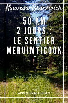 Compte-rendu du sentier Meruimticook, Nouveau-Brunswick : 50 km en 2 jours #canada #travel #voyage #hiking #randonnée #exploreNB New Brunswick Canada, Blog Voyage, Road Trip, Destinations, Movie Posters, Solo Travel, Holiday Beach, Pathways