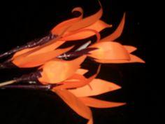 Handmade beautiful palash flowers for bouquet