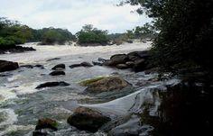 PopularPlaces Suriname. Location: Arapahu Island with Tropical Gem Tours. #Caribbean #Caraiben #Suriname #Beautiful #Amazing #travel #places #nature #landscape #beautifuldestinations #beautifulplaces #bestplacetogo #destinations #populardestinations #popularplaces #caribbean #caribbeansea #destination #landscape #naturelover #rainforest #jungle #southamerica