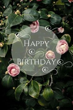 birthday images for women 52 sweet and funny Happy Birthday images for men, women, siblings, friends & family. Touching birthday images full of humor & beautiful loving wishes. Cool Happy Birthday Images, Happy Birthday Wishes Cards, Birthday Blessings, Best Birthday Wishes, Happy Birthday Funny, Happy Birthday For Her, Birthday Pins, Special Birthday, Birthday Greetings For Women