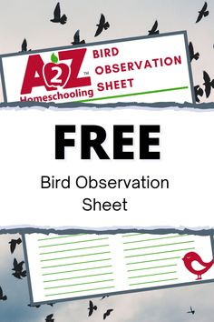 Get outside and #birdwatching with this fun free bird obervation sheet. Perfect for those animal loving #homeschoolers or those looking at a way to add more #nature into their lessons. Fun Fall Activities, Science Activities, Homeschool Blogs, Homeschooling, Birds For Kids, Enchanted Learning, Nature Study, Birdwatching, Projects For Kids