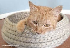 """""""The pattern for this shabby-chic bed came about when our family was recently adopted by a little orange stray tabby. Give it a try, and give your favorite kitty a cozy place to take his naps!"""""""