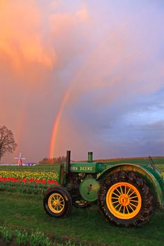 At the Wooden Shoe Tulip farm last night. Country Charm, Southern Charm, Tulip Festival, Pot Of Gold, Love Flowers, Wooden Shoe, Tulips, Oregon, Monster Trucks