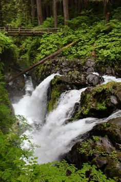Sol duc Falls in Olympic National Park. A beautiful trail located right next to Lake Crescent.