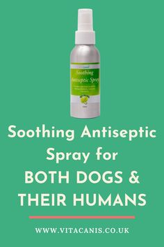 Are you interested in dog health and wellness and want the best natural dog product for your dog? Vita Canis' soothing antiseptic spray for dogs (and humans) is the best solution for a range of dog health issues. #dogs #pethealth #dogproducts