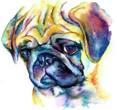 Pet Watercolor Painting | pug blue face watercolor giclee prints on fine art watercolor paper ...