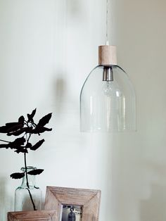 NEW Alma Glass Dome Pendant - NEW FOR AUTUMN - Lighting
