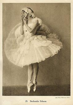 Costume by Leonid Bakst for Anna Pavlova, Swan Lake Anna Pavlova, Ballet Poses, Ballet Dancers, Ballerine Vintage, La Bayadere, Dancer Photography, Vintage Ballerina, Martha Graham, Russian Ballet