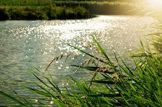 Miljötips för en bättre värld | Keep it Smpl™